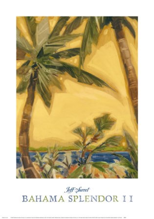 Bahama Splendor II by Jeff Surret art print