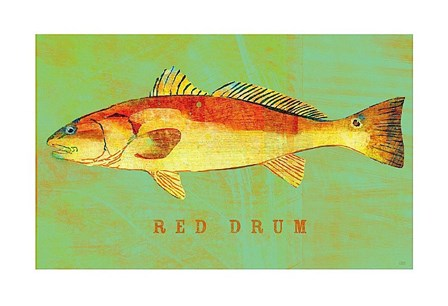 Red Drum by John W. Golden art print