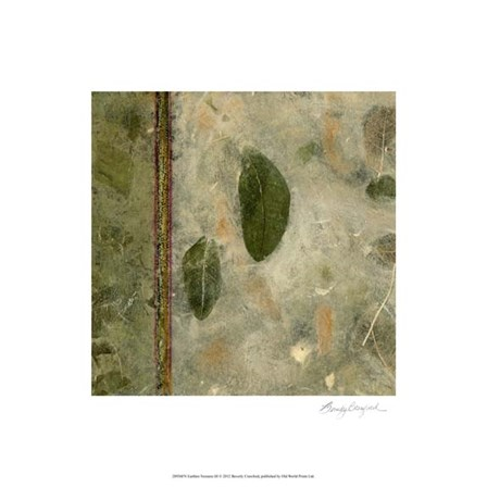 Earthen Textures III by Beverly Crawford art print