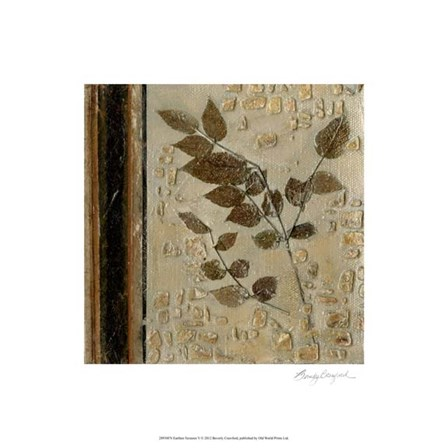 Earthen Textures V by Beverly Crawford art print