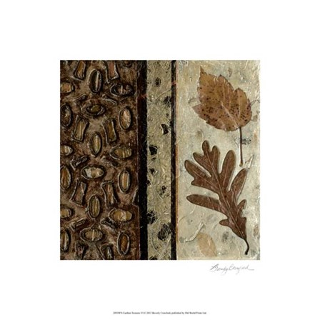 Earthen Textures VI by Beverly Crawford art print