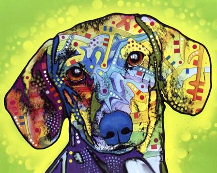 Dachshund by Dean Russo art print