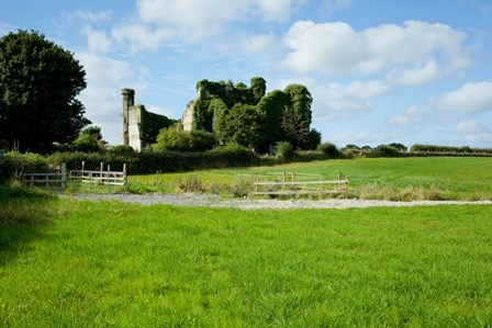 Moydrum Castle, Athlone, Republic of Ireland by Panoramic Images art print