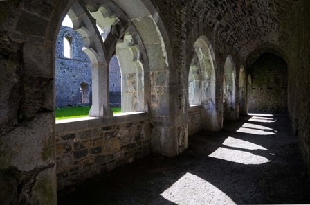 The Cloisters in Killmallock 12th Century Dominican Friary, Co Limerick, Ireland by Panoramic Images art print