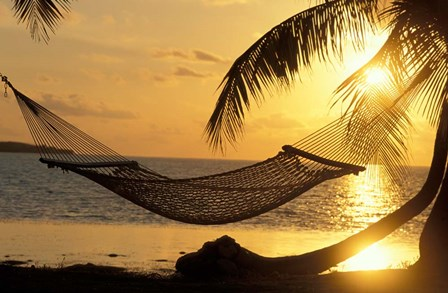 Hammock at Sunset by Panoramic Images art print