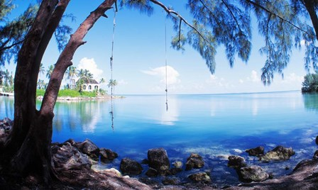 Rope Swing Over Water, Florida Keys by Panoramic Images art print