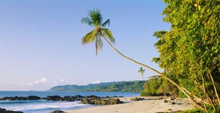 Montezuma Beach, Nicoya Peninsula, Costa Rica by Panoramic Images art print