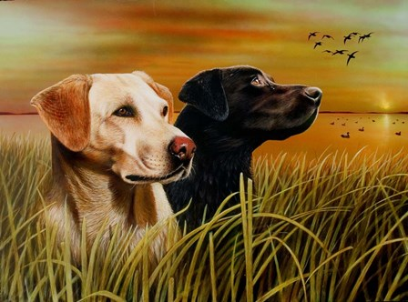 Hunting Dogs by Clarence Stewart art print