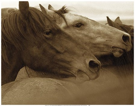 Brothers by Tony Stromberg art print