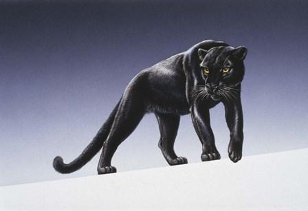 Black Panther by Harro Maass art print