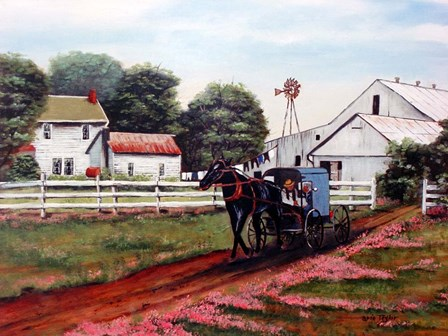 Amish Country 2 by Arie Reinhardt Taylor art print
