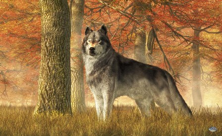 A Wolf In Autumn by Daniel Eskridge art print
