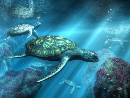 Sea Turtles by Daniel Eskridge art print