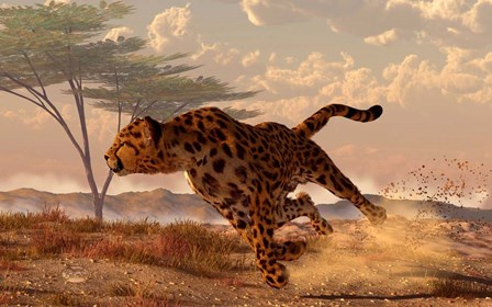 Speeding Cheetah by Daniel Eskridge art print