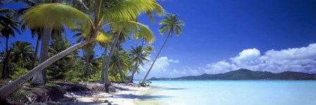 Tropical Paradise by Doug Cavanah art print