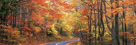 October Road by Doug Cavanah art print