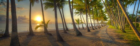 Palm Cove by Doug Cavanah art print