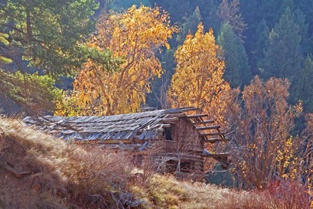 North Fork Cabin by Larry McFerrin art print