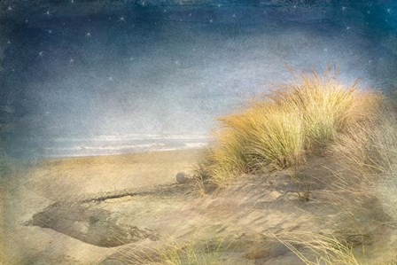 Starry Beach by Ramona Murdock art print